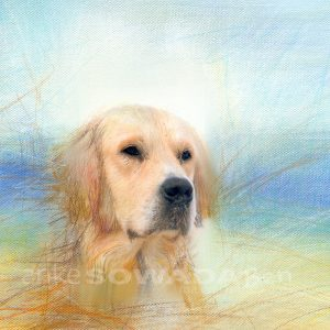 Auftragsmalerei-Hunde-Ben