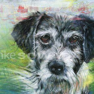 Malerei-Hund-Benny-Auftragsarbeit