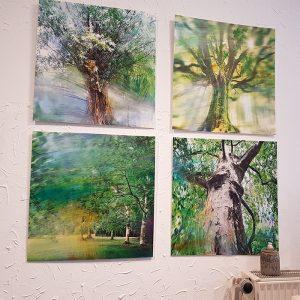 Galerie-Kurzweil-Bilderreihe