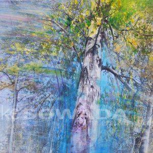 Malerei-Bäume-Birken-im-Licht