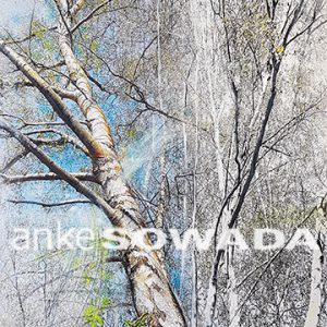 Malerei-Baum-Kiefer-Birken