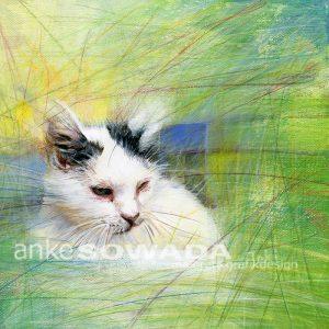 Malerei-Aufträge-Katzen-Joki