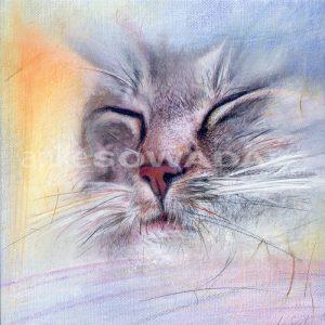 Malerei-Kater-Acrylbild