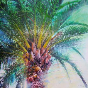 Malerei-Baum-Palme-Hannover
