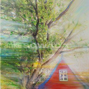 Baum-rotes-Haus-Naturdenkmal
