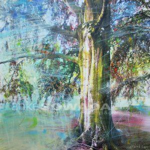 Malerei-Baum-Rotbuche-Hannover-Georgengarten