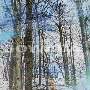 Malerei-Bäume-mit-Schnee