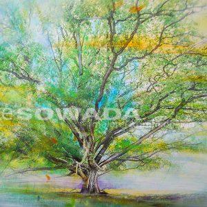 Malerei-Baum-verzaubert